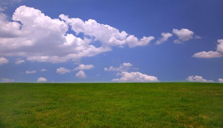 Green grass and blue sky background with copy space Stock Photo - 1215986