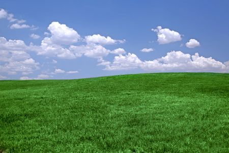 Green grass and blue sky background with copy space Stock Photo - 1216011