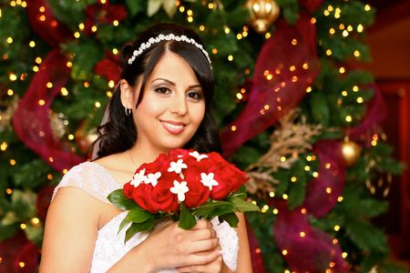 Beautiful Brown Eyed Latino Bride at Christmas Time Stock Photo