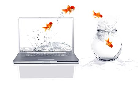 reality: Jumping from the virtual world to the real world: Goldfish Escape Stock Photo
