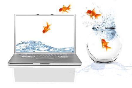 peces de colores: Goldfish escapar de su mundo de saltar fuera de su acuario en un mundo virtual  Foto de archivo