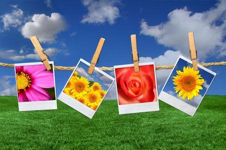 Clothespins로 개최 밧줄에 매달려 멋진 꽃 이미지