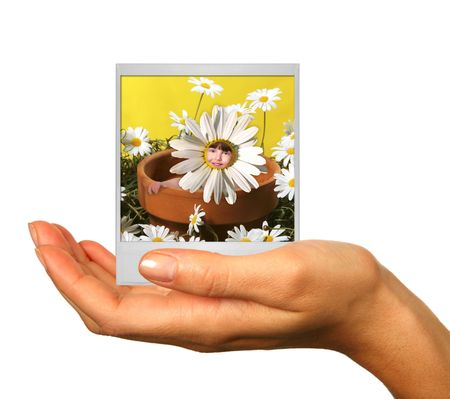 skintone: Human Hand Isolated on White Holding a Polaroid Film Photograph of a Child in a Flowerpot of Daisies