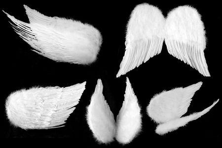 ali angelo: Molti angoli di bianco angelo custode ali isolate su fondo nero facilmente estratta  Archivio Fotografico