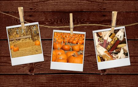 Thanksgiving Halloween Fall Images Hanging on a Rope  photo