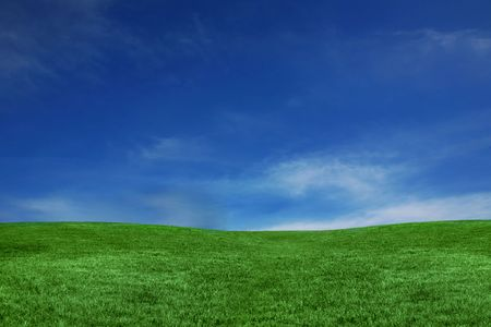 colorful cloudscape: Empty Landscape Only Containing Green Grass and Blue Sky