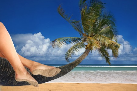 Woman Dangling Her Feet While Sitting on a Palm Tree Overlooking the Ocean Stock Photo - 3947709