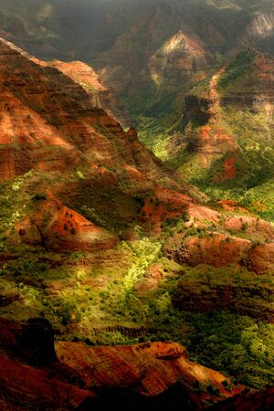 Vertical Landscape in Kauai Hawaii of Waimea Canyon Stock Photo - 3947689