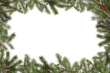 Holiday Seasonal Tree Border With Copyspace