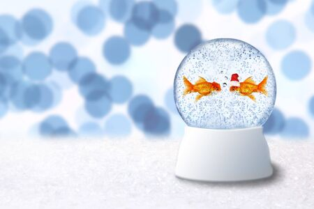 Christmas Snow Globe With Goldfish Santa Inside. Insert Your Own Image or Text photo