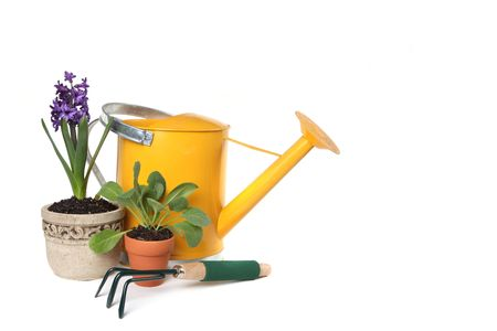 Spring Time Gardening With Watering Can, Trowel and Plantings on White Background Stock Photo - 4173448