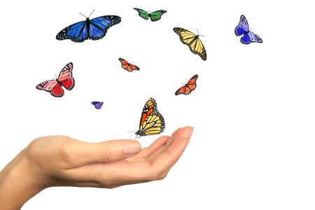 Womans Hand Releasing Beautiful Butterflies Into the Wind Reklamní fotografie
