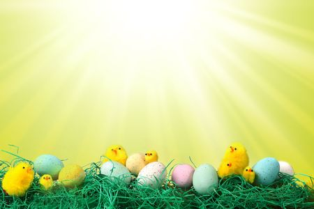 Fun Easter Holiday Image With Chicks Eggs and Grass Against Starburst Pattern Background photo