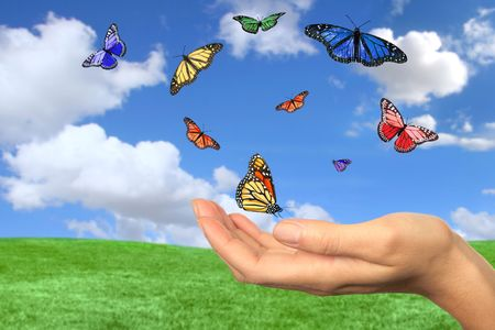 release: Butterflies Flying Free Against a Beautiful Spring Landscape Stock Photo
