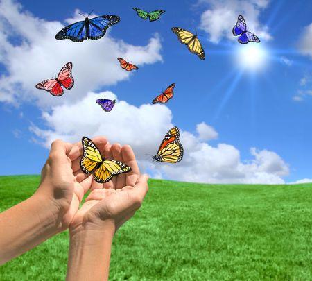 蝶のリリースされていると幸せな明るい風景