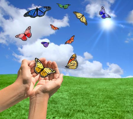 Happy Bright Landscape WIth Butterflies Being Released Stockfoto