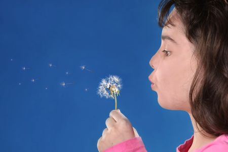 Young Child Blowing Dandylions Against Blue Background photo