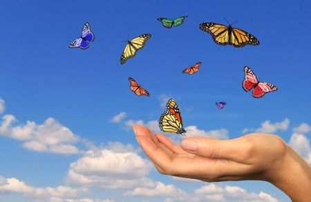 Hand Holding Released Buttterflies Against a Sky Background Stock Photo - 5315735