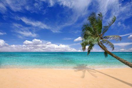 Paradise Teal Waters of the Hawaiian Islands Stock Photo - 5853277