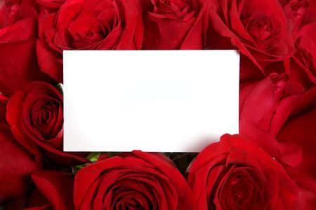 Blank Message Card Surrounded by Red Roses Perfect for Valentines Day or an Anniversary photo
