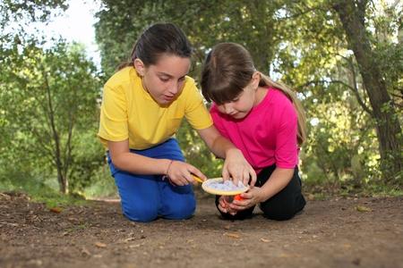야외 캠핑하는 동안 형제 자매 소녀는 곤충 사냥