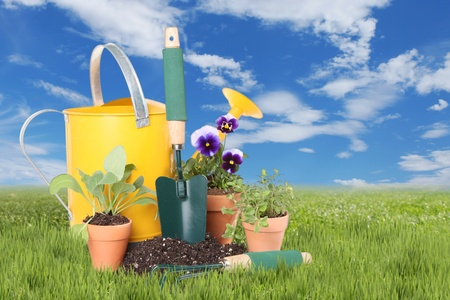 Planting New Flowers and Herbs in Celebration of Spring Time Stock Photo - 19485805