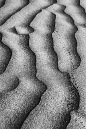 Artistic Sand Dune Formations in Death Valley  Stock Photo - 19485874