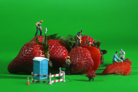 Miniature Construction Workers in Conceptual Food Imagery With Strawberries