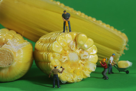 comedic: Miniature Construction Workers in Conceptual Food Imagery With Corn