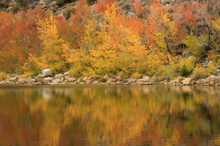 sierras: Beautiful Fall Colors in the Sierra Mountains Californa