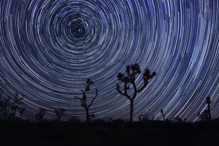 north star: Star Trails and Milky Way in Joshua Tree National Park