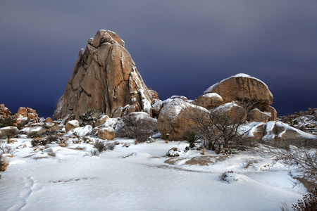 joshua tree national park: Joshua Tree National Park After Snow Storm
