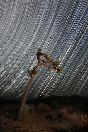 Camping at Night With Star Trails in Joahua Tree National Park