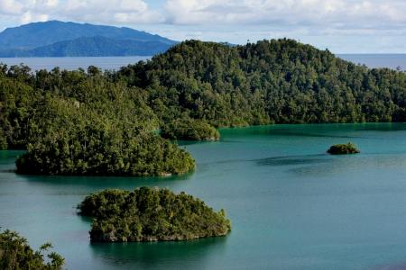 papua: Beautiful landscape scenery of Wayag Island in Raja Ampat, West Papua, Indonesia