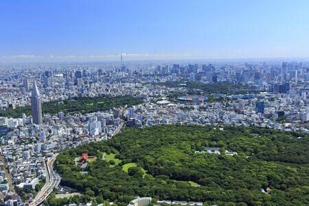 Over Yoyogi Park, Aerial View, Urban Landscape