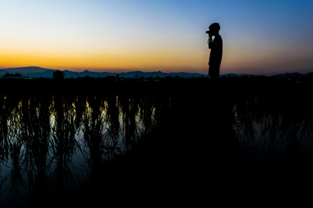 Man stand on the rice field at the sunset time and take a photo Stock Photo
