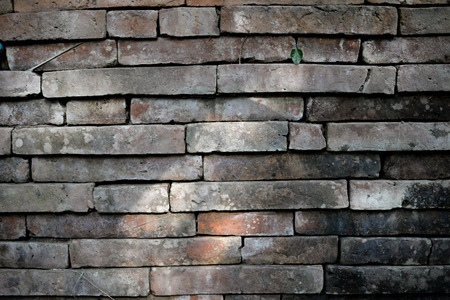 Old brick wall background with light Stock Photo