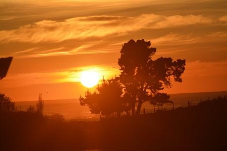 sunrises: Timaru sunrises