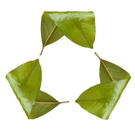 Recycle symbool gemaakt van bladeren