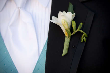 Groom's Boutonniere Stock Photo - 8557054