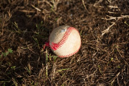 outfield: Baseball on the Ground