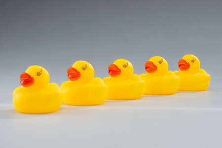 Row or Yellow Rubber Ducks depicting the concept, Having your Ducks in a Row Stock Photo