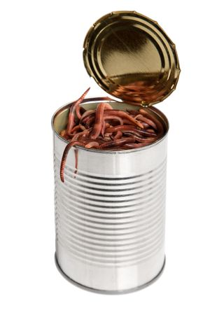 invertabrate: Concept for the idiom of a open can of worms