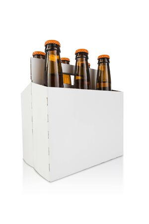 six pack: a six pack bottle of beer on white hero angle
