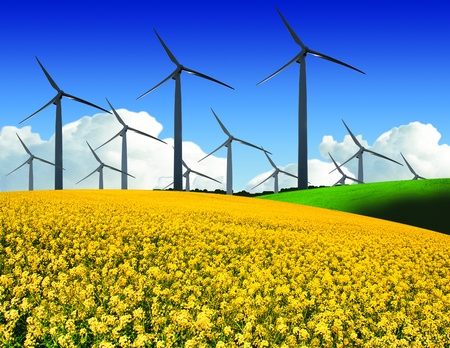 wind farm in field photo