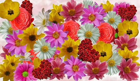 flower collage template for photo collages and scrapbook crafts photo