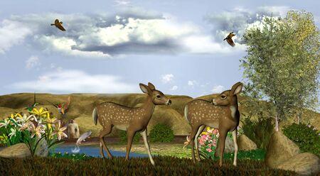 2 つの鹿を発見するワイド オープン