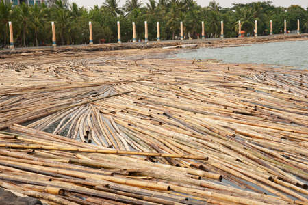 Bamboo soaked in water at midday on several at the riverside for days to be used for a variety of tasks in the future. Stock Photo