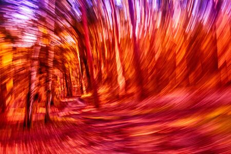 Abstract whirlwind of energy rushing on the forest road among birch trees