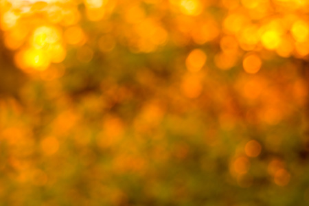 Palette of golden bokeh filled with optimism and good spirits